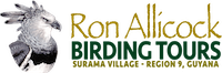 Birding Tours by Ron Allicock - Guyana, South America